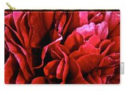 Red Ruffles Carry-all Pouch