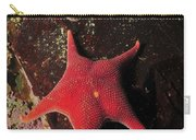 Red Sea Star And Limpet On Brown Rock Carry-all Pouch