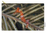 Red Seahorse On Caribbean Reef Carry-all Pouch
