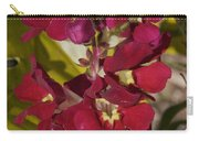 Red Silk Carry-all Pouch