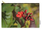 Red Snake Carry-all Pouch