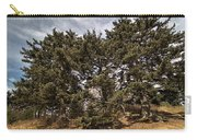 Red Spruce On Whitetop Mountain Carry-all Pouch