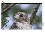 Red-tailed Hawk Has Superior Vision Carry-all Pouch
