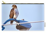 Red-tailed Hawk Perched Carry-all Pouch