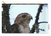 Red-tailed Hawk - Young And The Old Carry-all Pouch