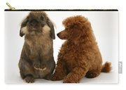 Red Toy Poodle Pup With A Lionhead Carry-all Pouch