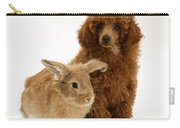 Red Toy Poodle Pup With Lionhead-cross Carry-all Pouch