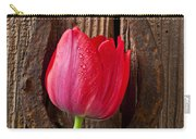Red Tulip And Horseshoe  Carry-all Pouch