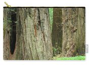 Redwood Trees Art Prints Big California Redwoods Carry-all Pouch