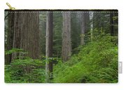 Redwoods Along Ossagon Trail Carry-all Pouch