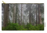 Redwoods In Breaking Mists Carry-all Pouch
