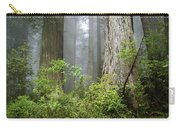 Redwoods In May Carry-all Pouch