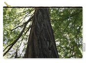 Redwoods Sequoia Sempervirens Carry-all Pouch