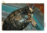 Reflecting Turtle Carry-all Pouch