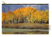 Reflection At Oxbow Bend Carry-all Pouch
