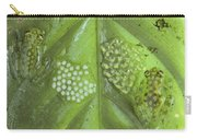 Reticulated Glass Frogs And Eggs Carry-all Pouch