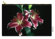 Reuben Lillies Carry-all Pouch