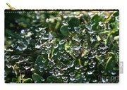 Rhinestone Diamonds Carry-all Pouch