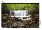 Ricketts Glen Waterfall Oneida Carry-all Pouch