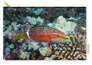 Ringtail Wrasse Carry-all Pouch