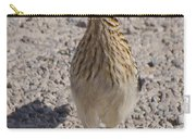 Road Runner A Carry-all Pouch