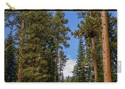 Road Through Lassen Forest Carry-all Pouch