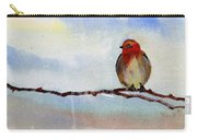 Robin 1 Carry-all Pouch by Anil Nene