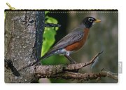 Robin I Carry-all Pouch