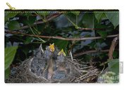 Robin Nestlings Carry-all Pouch by Ted Kinsman