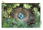 Robins Nest And Cowbird Egg Carry-all Pouch