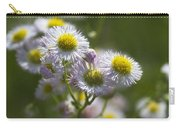 Robin's Plantain - Alabama Wildflowers Carry-all Pouch