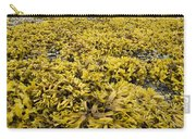 Rock Weed Fucus Gardneri At Low Tide Carry-all Pouch