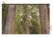 Rocky Mountain Forest Walk Carry-all Pouch