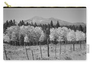 Rocky Mountain High Country Autumn Fall Foliage Scenic View Bw Carry-all Pouch