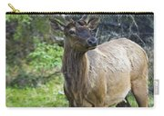 Roe Deer In Forest, Canadian Carry-all Pouch