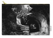 Rome: Colosseum, 1840 Carry-all Pouch