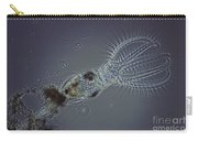 Rotifer Stephanoceras Carry-all Pouch