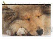 Rough Collie Pup Carry-all Pouch