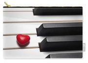 Row Of Piano Keys Carry-all Pouch