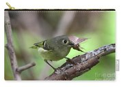 Ruby-crowned Kinglet Nabs A Moth Carry-all Pouch