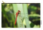 Ruby Meadowhawk Dragonfly Carry-all Pouch