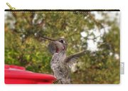 Ruby Throated Feeding Carry-all Pouch