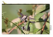 Ruby-throated Hummingbird - An Altercation Carry-all Pouch