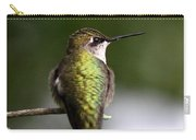 Ruby-throated Hummingbird - Hummingbird - Content Carry-all Pouch