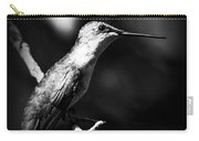 Ruby-throated Hummingbird - Signature Carry-all Pouch