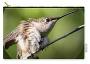 Ruby-throated Hummingbird  - The Stretch Carry-all Pouch
