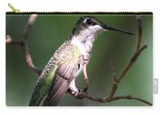 Ruby-throated Hummingbird - Hanging Low Carry-all Pouch