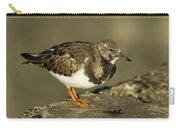 Ruddy Turnstone Arenaria Interpres Carry-all Pouch