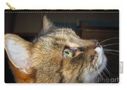 Runcius- The King Kitty Carry-all Pouch