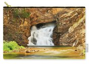 Running Eagle Falls Carry-all Pouch